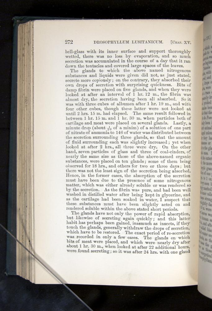 Image of Darwin-F1225-1888-272