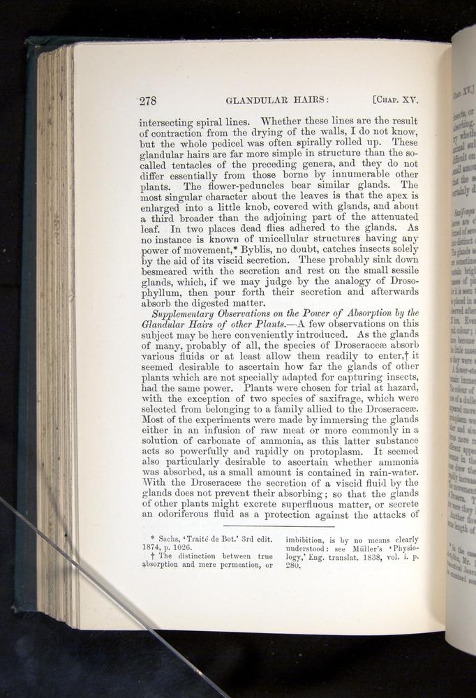 Image of Darwin-F1225-1888-278