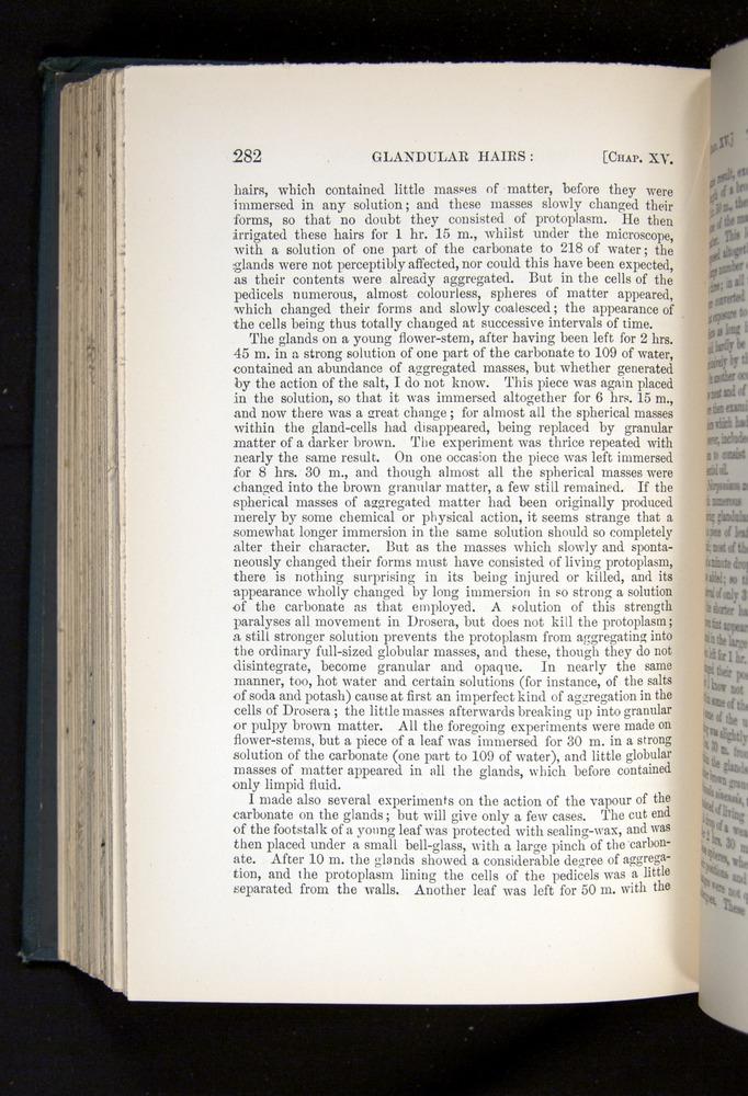 Image of Darwin-F1225-1888-282