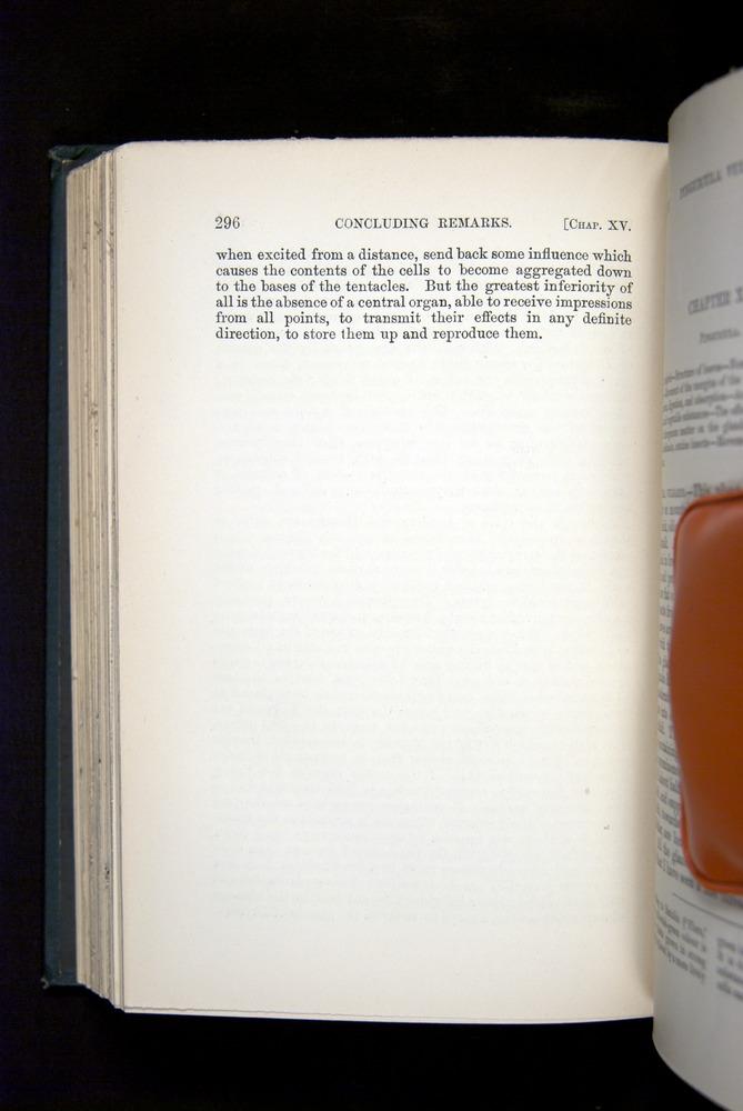 Image of Darwin-F1225-1888-296