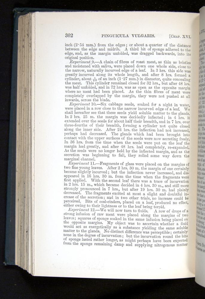 Image of Darwin-F1225-1888-302