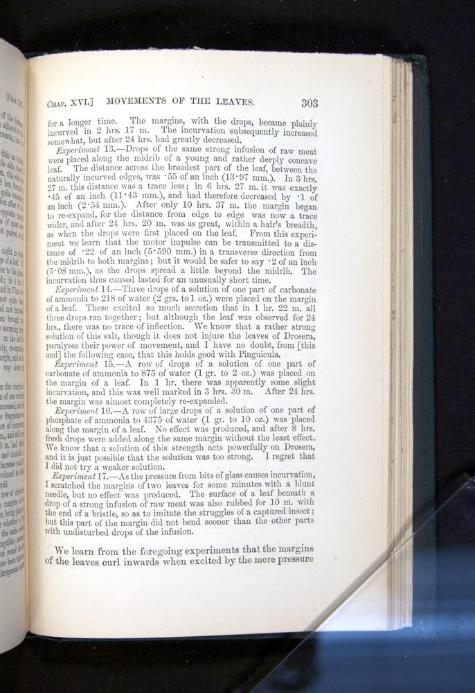 Image of Darwin-F1225-1888-303