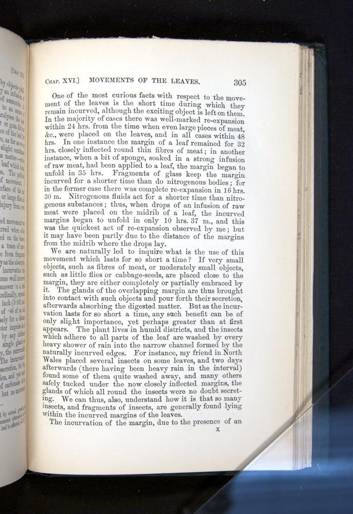 Image of Darwin-F1225-1888-305