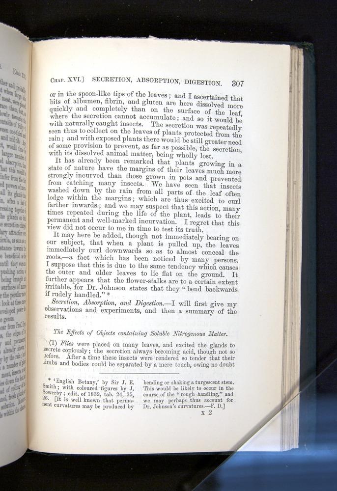 Image of Darwin-F1225-1888-307