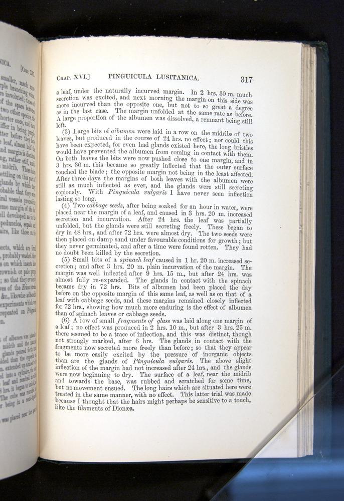 Image of Darwin-F1225-1888-317