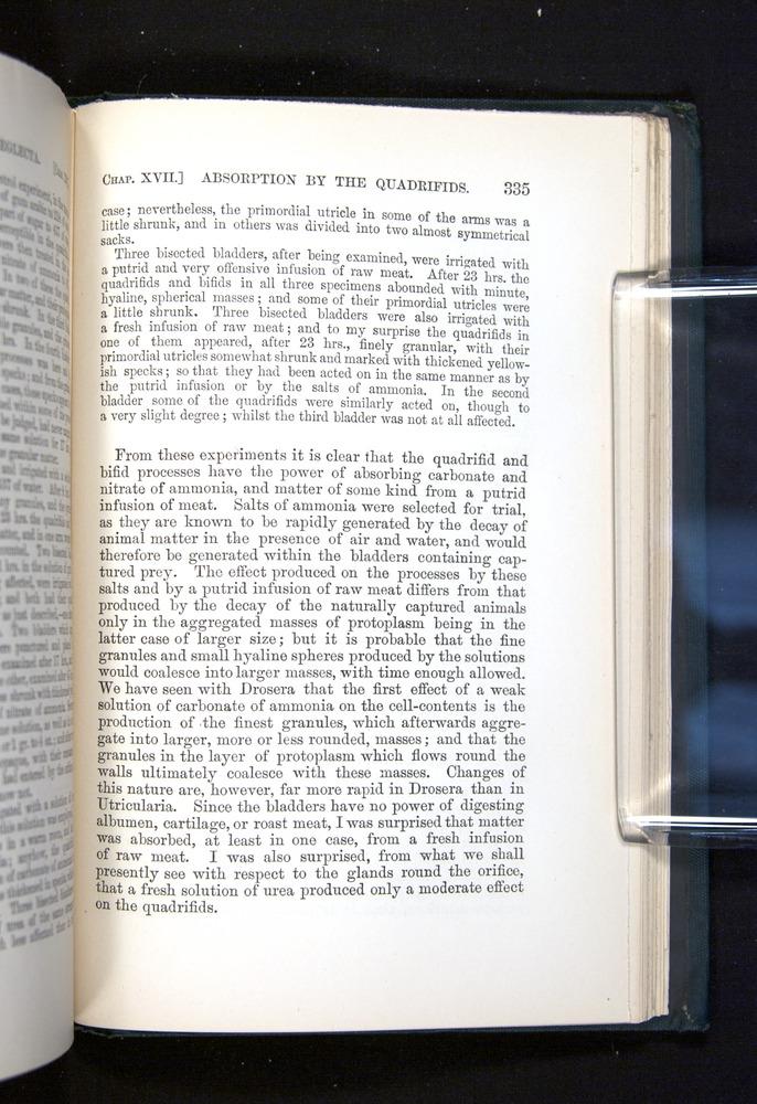 Image of Darwin-F1225-1888-335