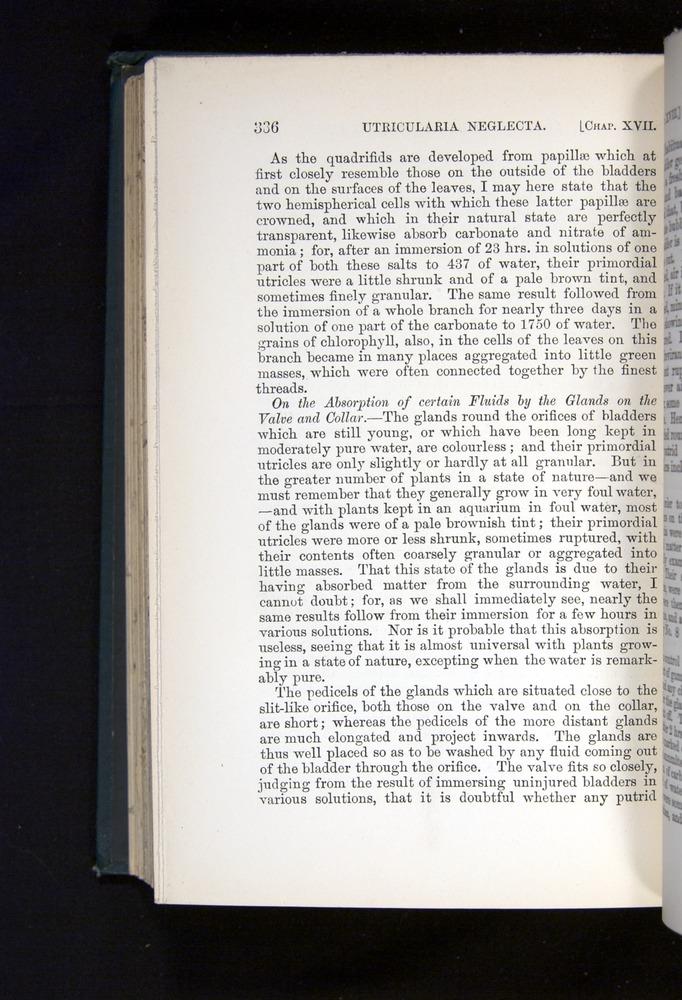 Image of Darwin-F1225-1888-336