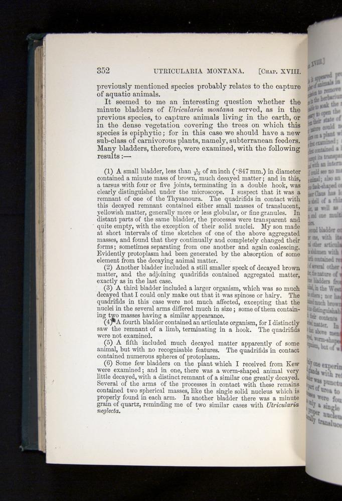 Image of Darwin-F1225-1888-352