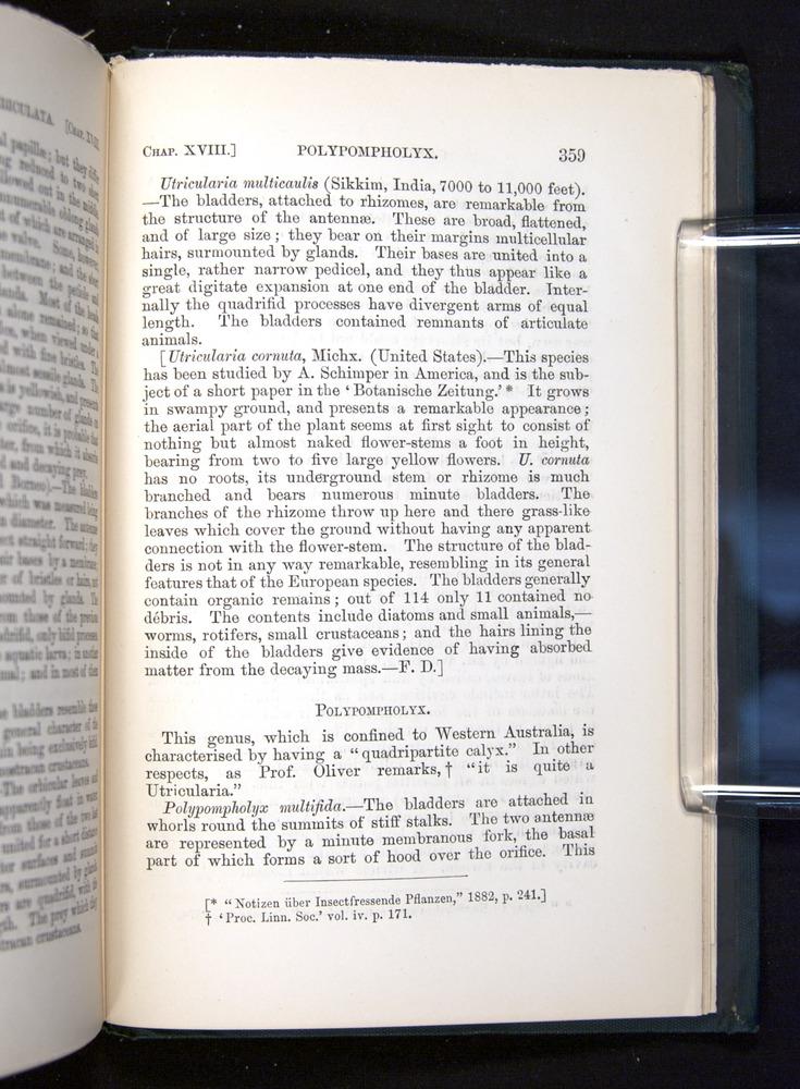 Image of Darwin-F1225-1888-359
