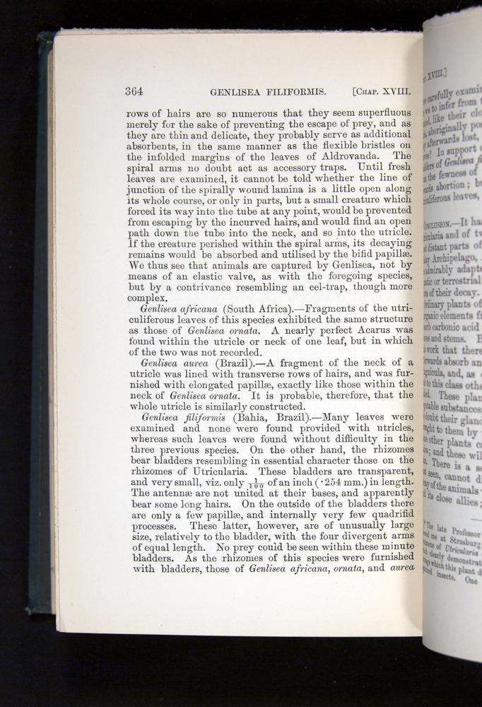 Image of Darwin-F1225-1888-364