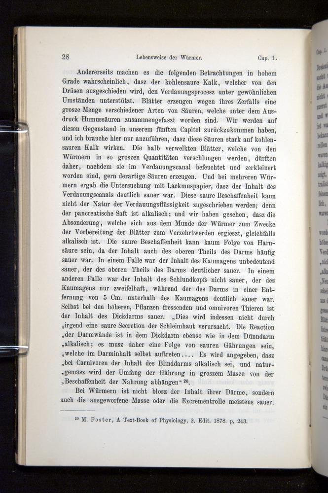 Image of Darwin-F1404-1882-028