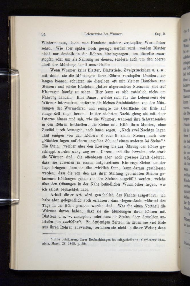 Image of Darwin-F1404-1882-034
