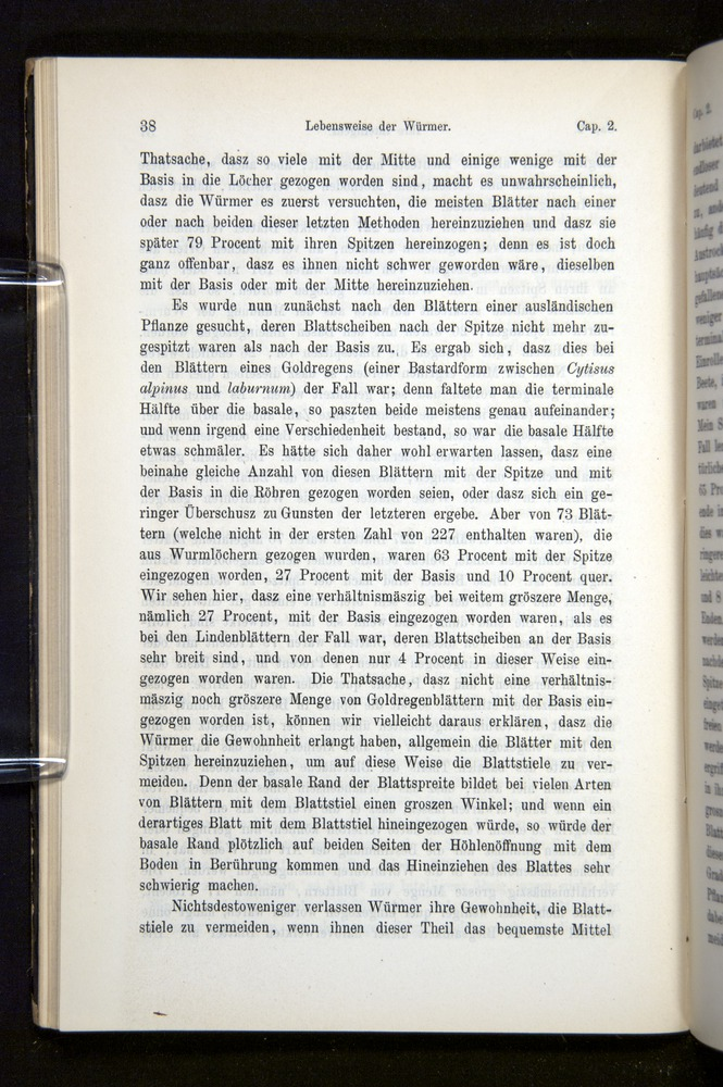 Image of Darwin-F1404-1882-038