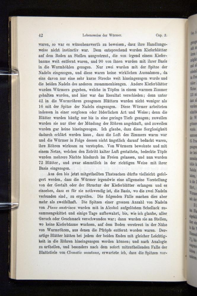 Image of Darwin-F1404-1882-042