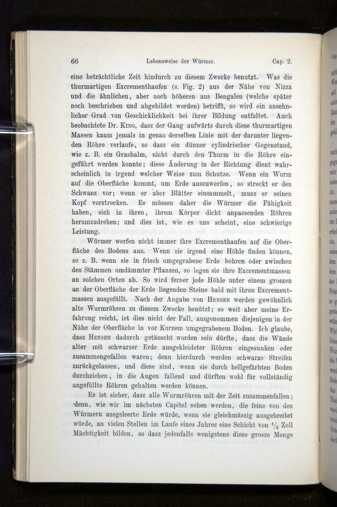 Image of Darwin-F1404-1882-066