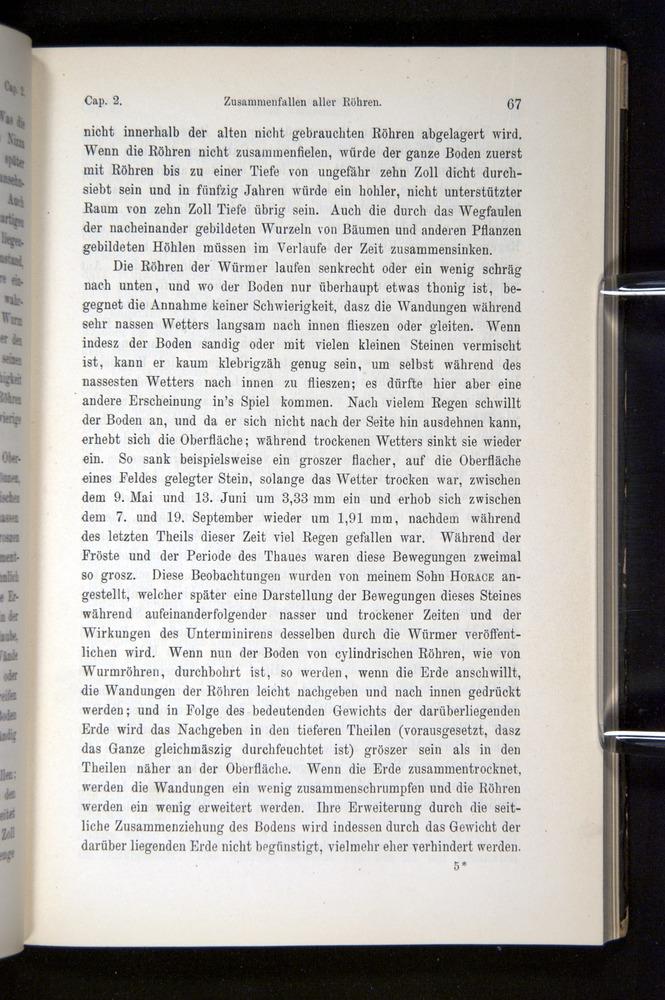 Image of Darwin-F1404-1882-067