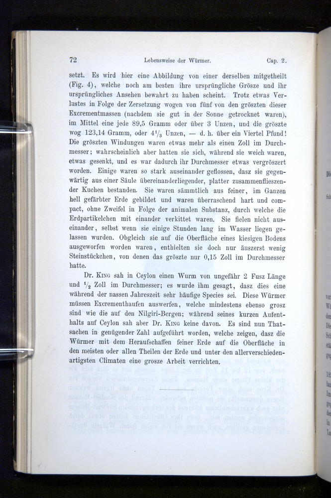 Image of Darwin-F1404-1882-072