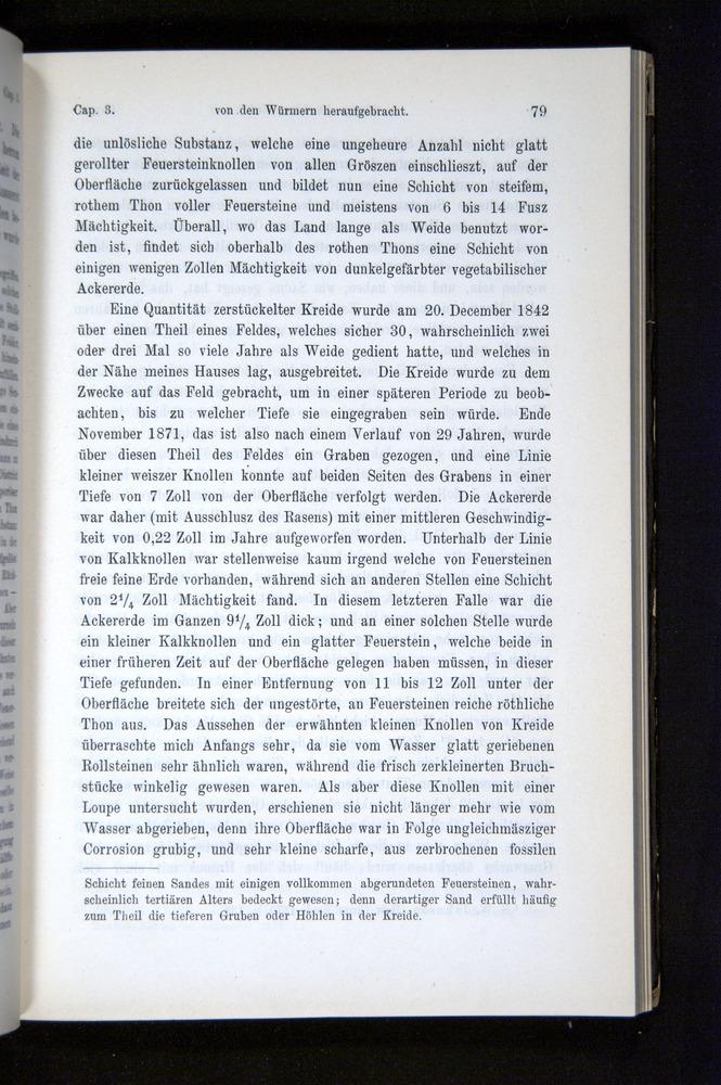 Image of Darwin-F1404-1882-079