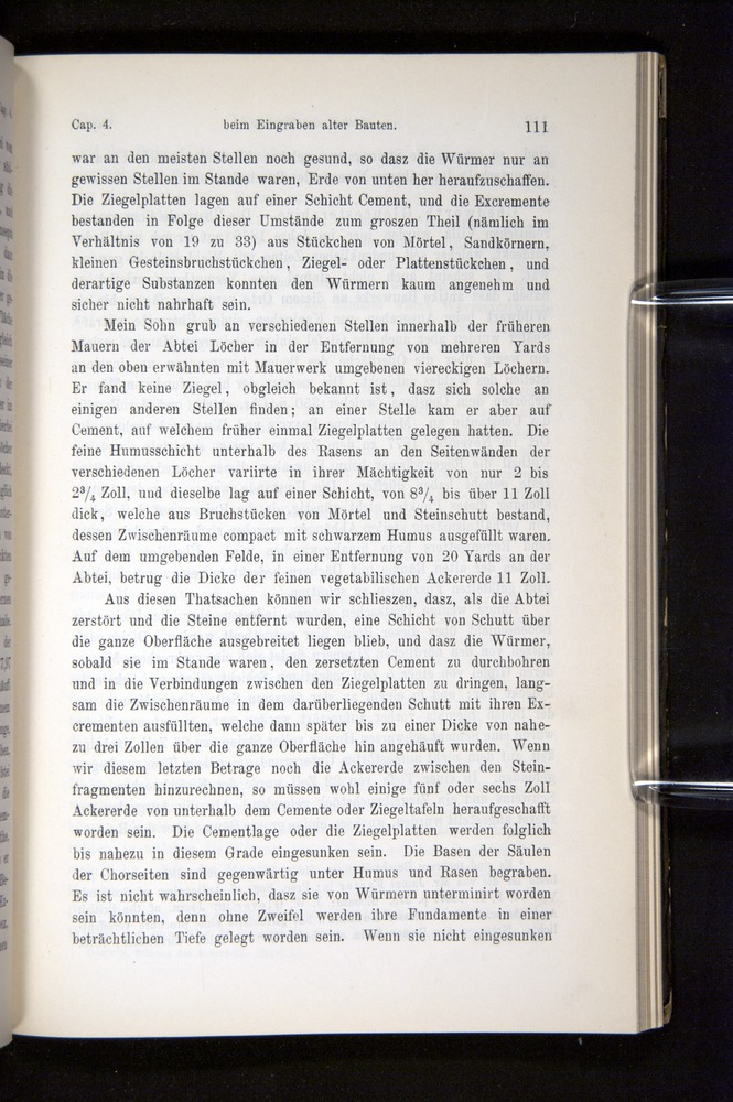 Image of Darwin-F1404-1882-111