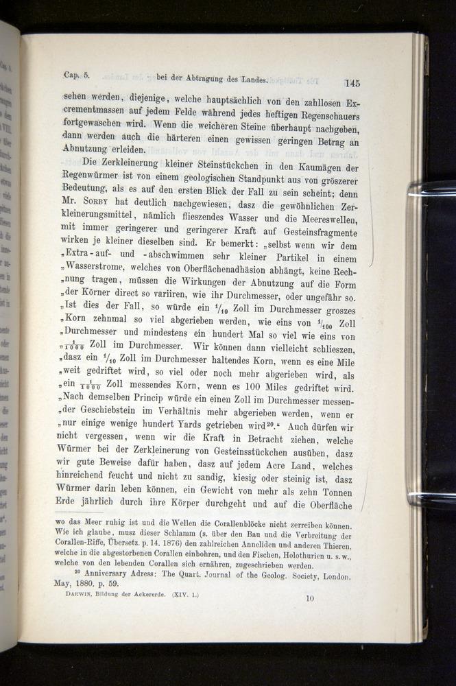 Image of Darwin-F1404-1882-145