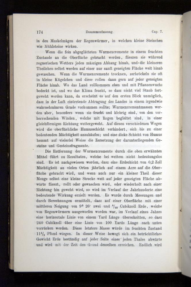 Image of Darwin-F1404-1882-174