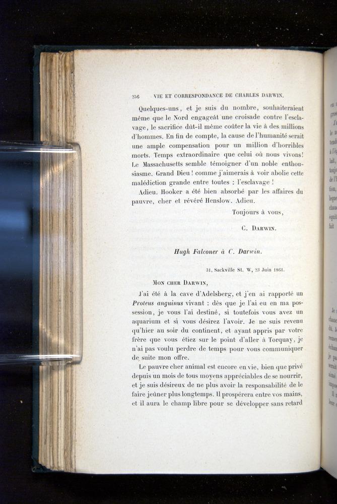Image of Darwin-F1514.2-1888-256