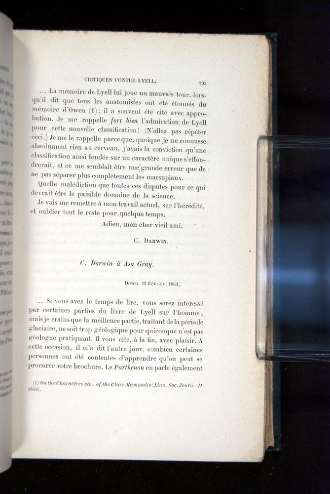 Image of Darwin-F1514.2-1888-295