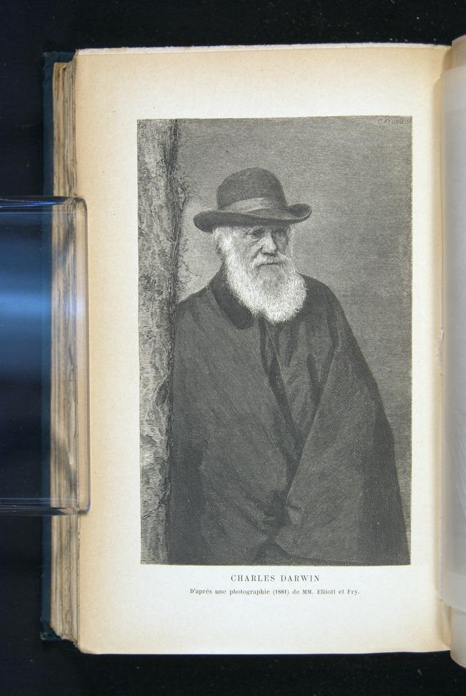 Image of Darwin-F1514.2-1888-610b
