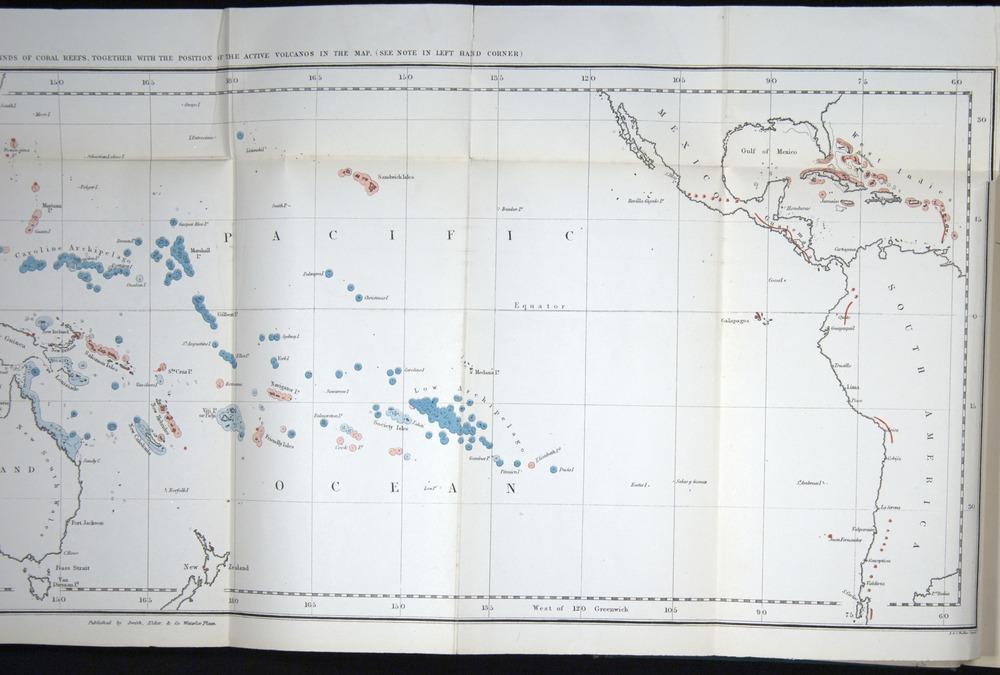 Image of Darwin-F275-1874-000-f1-b