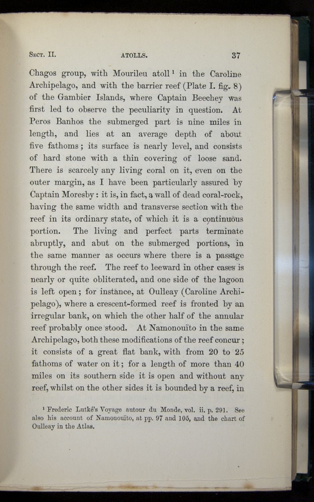 Image of Darwin-F275-1874-037