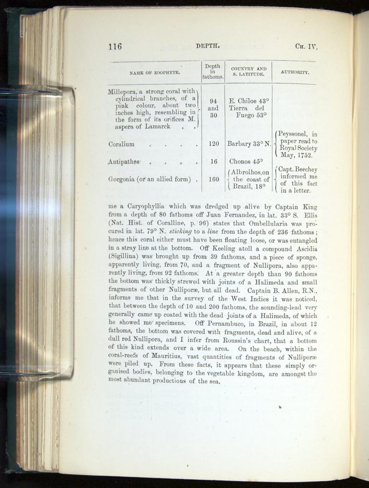 Image of Darwin-F275-1874-116