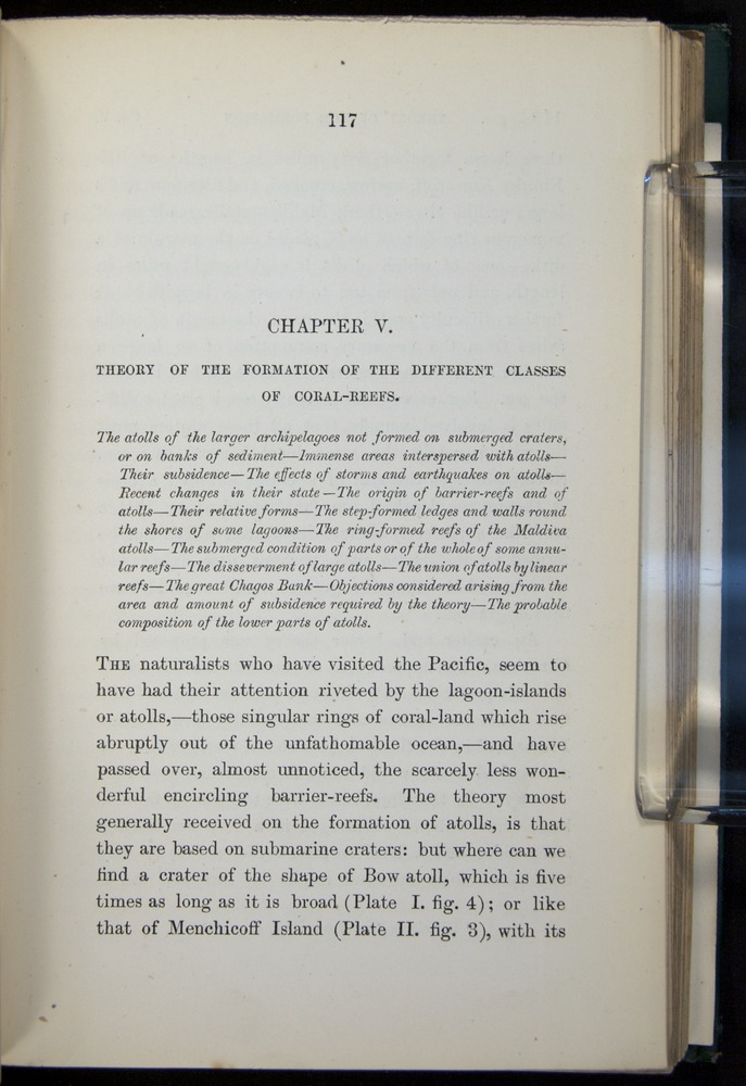Image of Darwin-F275-1874-117