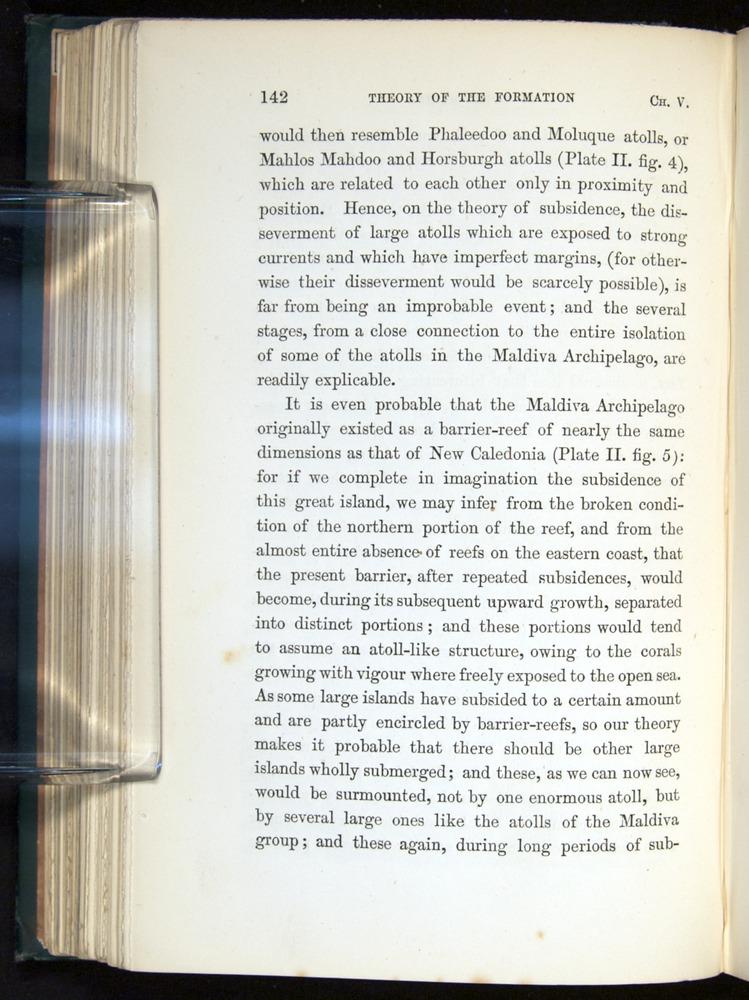 Image of Darwin-F275-1874-142