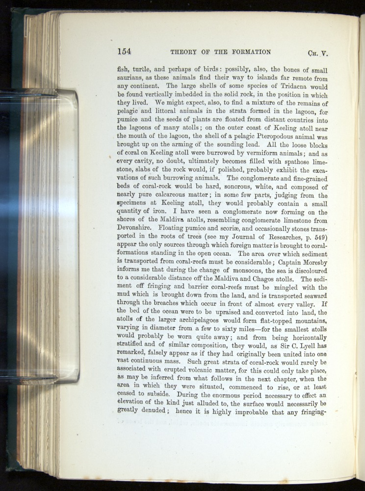 Image of Darwin-F275-1874-154