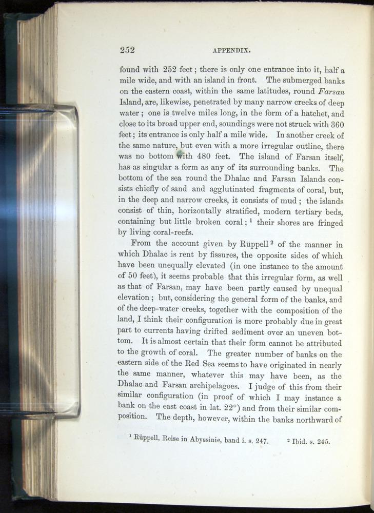 Image of Darwin-F275-1874-252