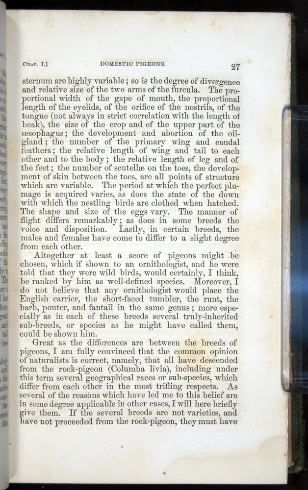 Image of Darwin-F377-1860-00027