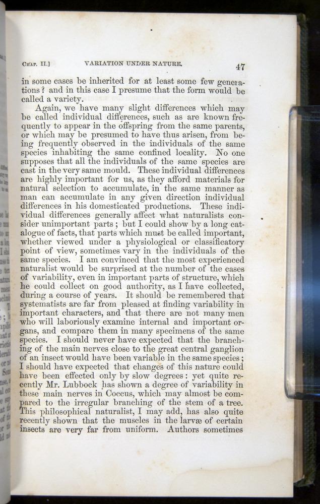 Image of Darwin-F377-1860-00047