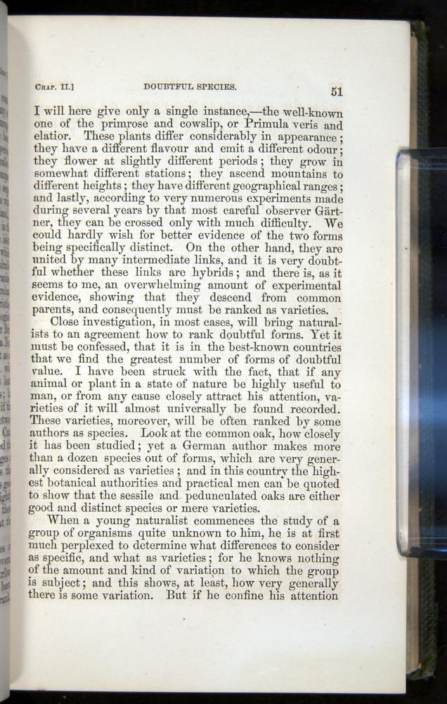Image of Darwin-F377-1860-00051