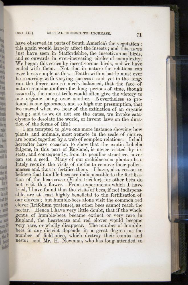 Image of Darwin-F377-1860-00071