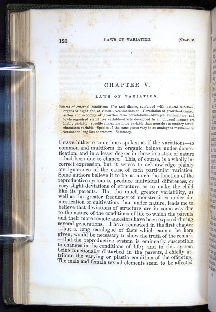 Image of Darwin-F377-1860-00120
