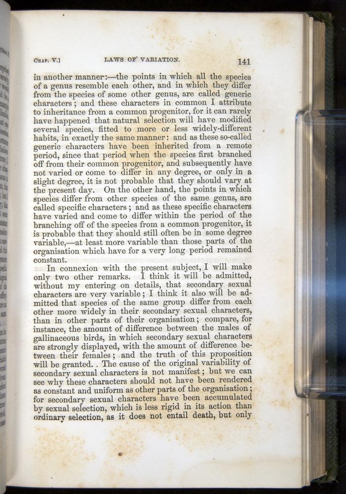 Image of Darwin-F377-1860-00141