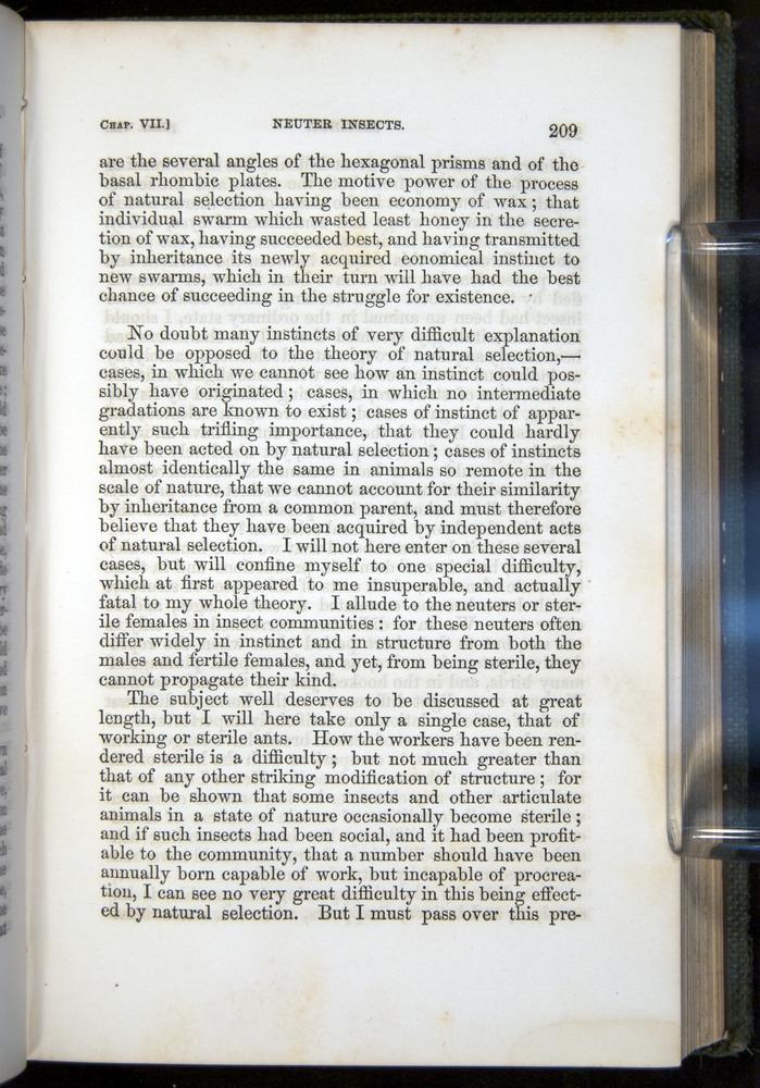 Image of Darwin-F377-1860-00209