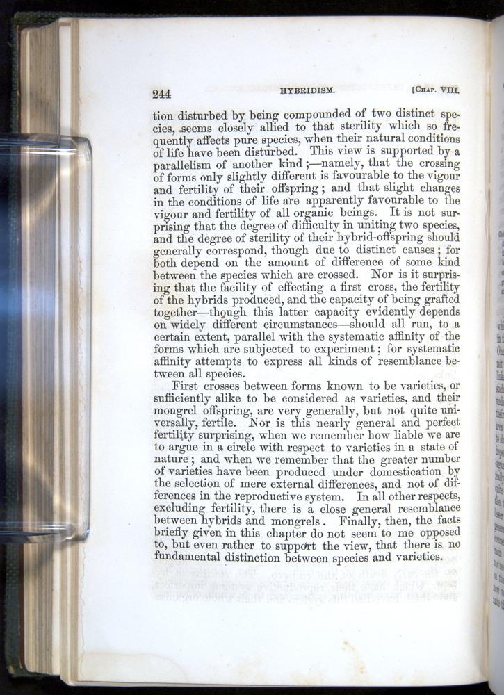 Image of Darwin-F377-1860-00244