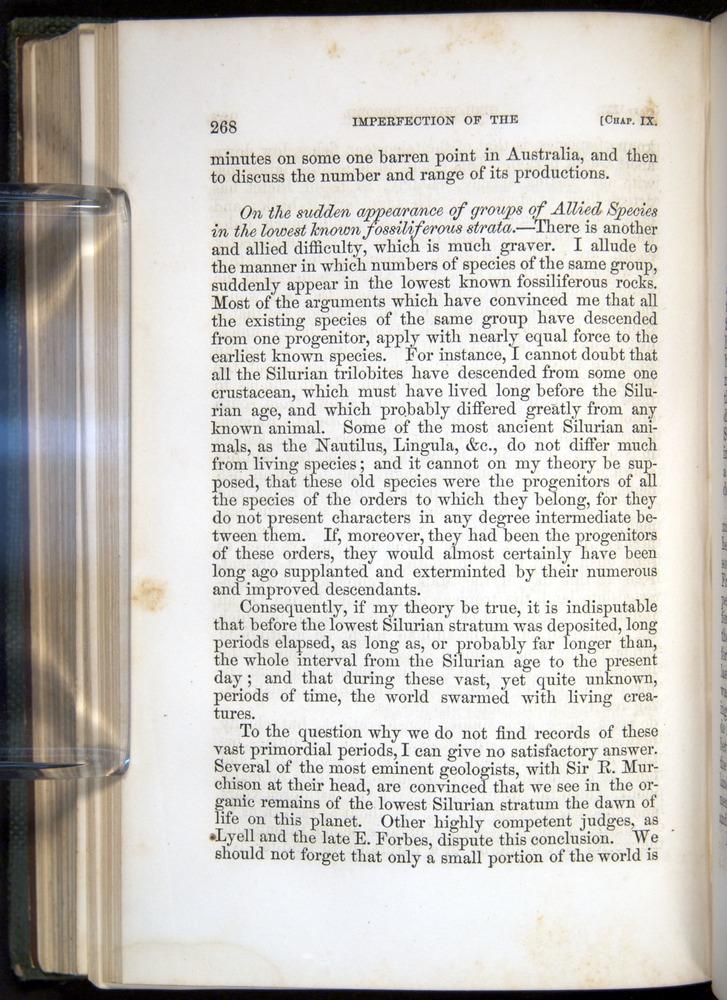 Image of Darwin-F377-1860-00268