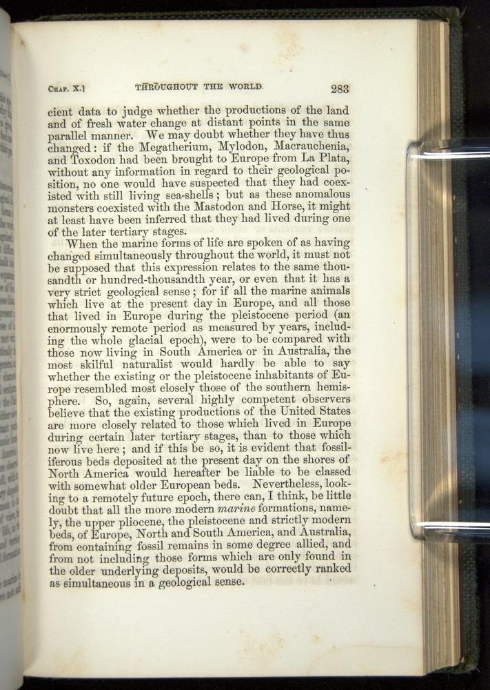 Image of Darwin-F377-1860-00283