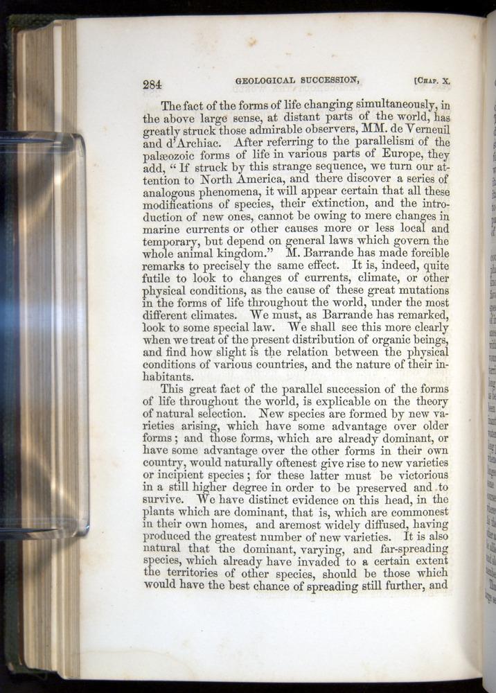 Image of Darwin-F377-1860-00284