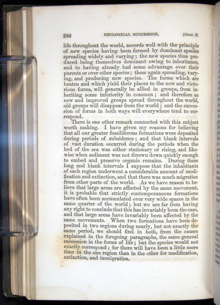 Image of Darwin-F377-1860-00286