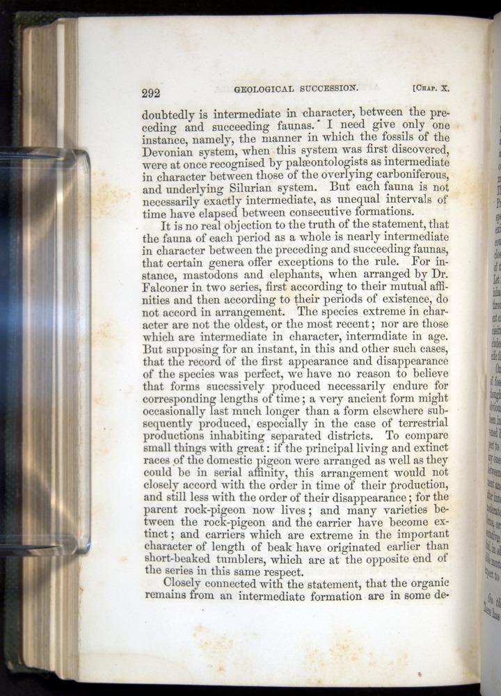Image of Darwin-F377-1860-00292