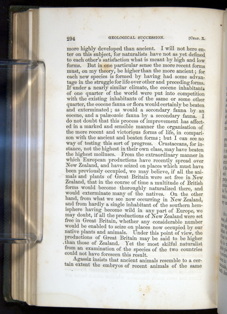 Image of Darwin-F377-1860-00294