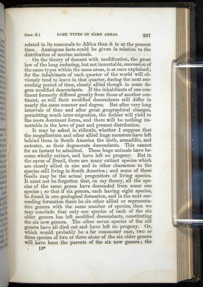 Image of Darwin-F377-1860-00297